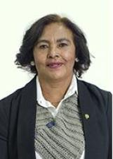 Candidato Nair Machado 43888
