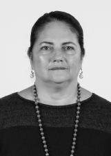 Candidato Berna Menezes 5010