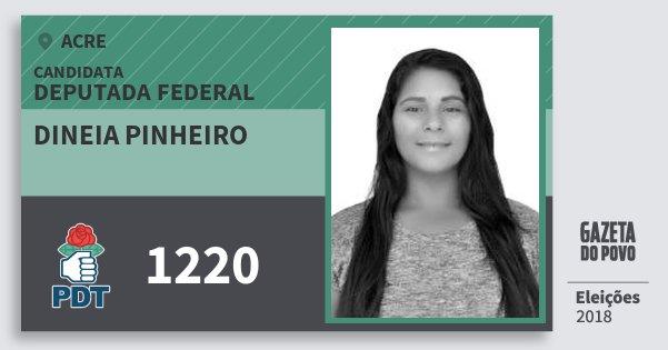 Santinho Dineia Pinheiro 1220 (PDT) Deputada Federal | Acre | Eleições 2018