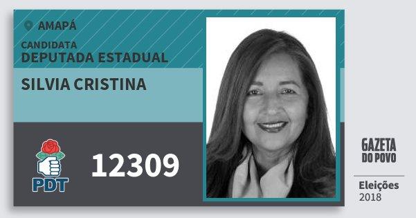 Santinho Silvia Cristina 12309 (PDT) Deputada Estadual | Amapá | Eleições 2018