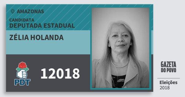 Santinho Zélia Holanda 12018 (PDT) Deputada Estadual | Amazonas | Eleições 2018