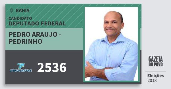 Santinho Pedro Araujo - Pedrinho 2536 (DEM) Deputado Federal | Bahia | Eleições 2018