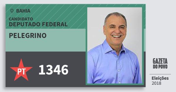 Santinho Pelegrino 1346 (PT) Deputado Federal | Bahia | Eleições 2018