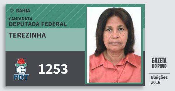 Santinho Terezinha 1253 (PDT) Deputada Federal | Bahia | Eleições 2018