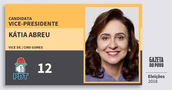 Santinho Kátia Abreu 12 (PDT) Vice-Presidente | Brasil | Eleições 2018