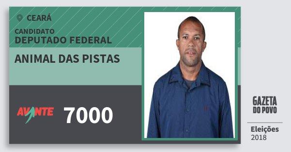 Santinho Animal das Pistas 7000 (AVANTE) Deputado Federal | Ceará | Eleições 2018