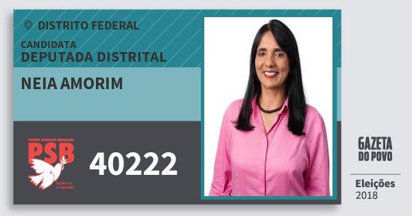 Santinho Neia Amorim 40222 (PSB) Deputada Distrital | Distrito Federal | Eleições 2018
