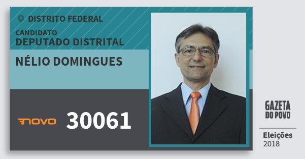 Santinho Nélio Domingues 30061 (NOVO) Deputado Distrital | Distrito Federal | Eleições 2018