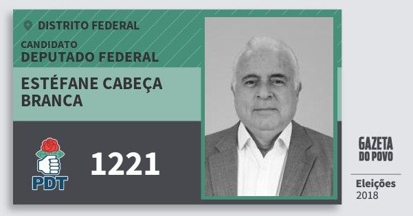 Santinho Estéfane Cabeça Branca 1221 (PDT) Deputado Federal | Distrito Federal | Eleições 2018