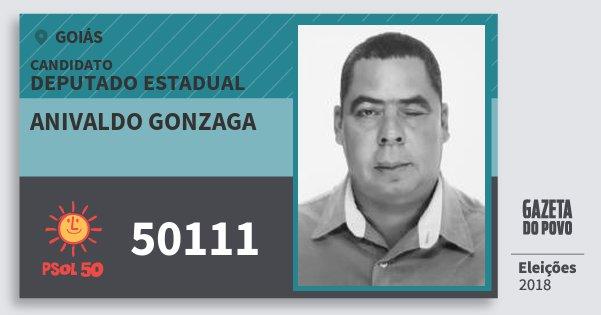 Santinho Anivaldo Gonzaga 50111 (PSOL) Deputado Estadual | Goiás | Eleições 2018
