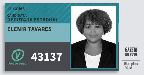 Santinho Elenir Tavares 43137 (PV) Deputada Estadual | Goiás | Eleições 2018