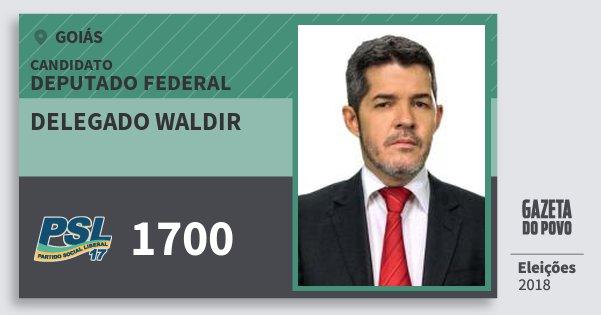 Santinho Delegado Waldir 1700 (PSL) Deputado Federal | Goiás | Eleições 2018
