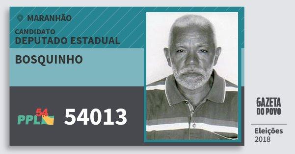 Santinho Bosquinho 54013 (PPL) Deputado Estadual | Maranhão | Eleições 2018