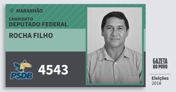 Santinho Rocha Filho 4543 (PSDB) Deputado Federal | Maranhão | Eleições 2018