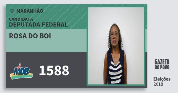 Santinho Rosa do Boi 1588 (MDB) Deputada Federal | Maranhão | Eleições 2018