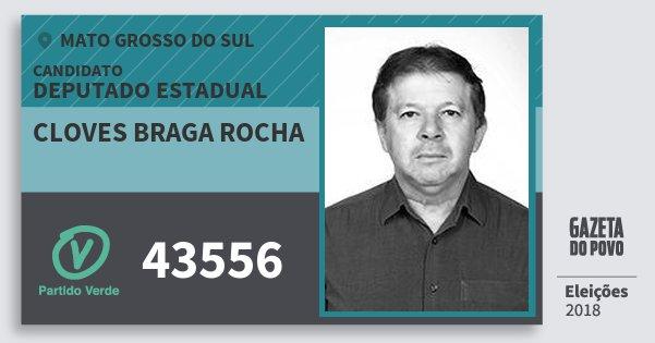 Santinho Cloves Braga Rocha 43556 (PV) Deputado Estadual | Mato Grosso do Sul | Eleições 2018