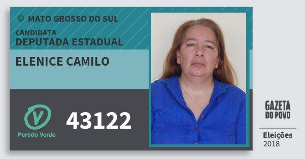 Santinho Elenice Camilo 43122 (PV) Deputada Estadual | Mato Grosso do Sul | Eleições 2018