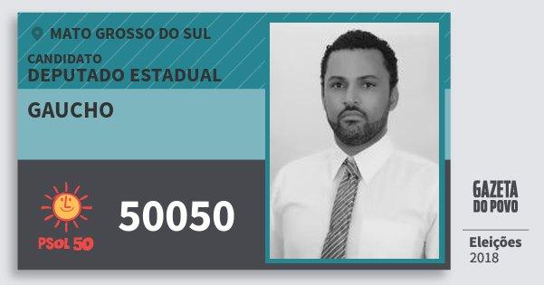 Santinho Gaucho 50050 (PSOL) Deputado Estadual | Mato Grosso do Sul | Eleições 2018