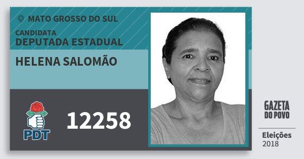 Santinho Helena Salomão 12258 (PDT) Deputada Estadual | Mato Grosso do Sul | Eleições 2018