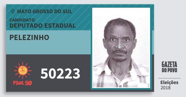 Santinho Pelezinho 50223 (PSOL) Deputado Estadual | Mato Grosso do Sul | Eleições 2018