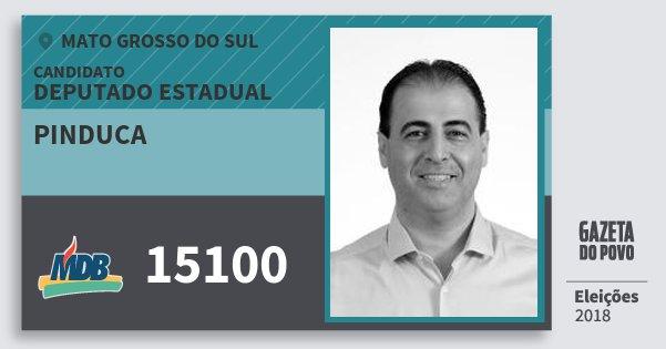 Santinho Pinduca 15100 (MDB) Deputado Estadual | Mato Grosso do Sul | Eleições 2018
