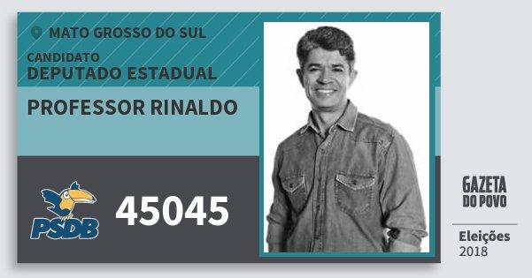 Santinho Professor Rinaldo 45045 (PSDB) Deputado Estadual | Mato Grosso do Sul | Eleições 2018