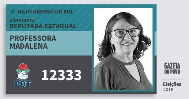 Santinho Professora Madalena 12333 (PDT) Deputada Estadual | Mato Grosso do Sul | Eleições 2018