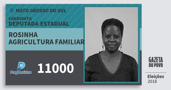 Santinho Rosinha Agricultura Familiar 11000 (PP) Deputada Estadual | Mato Grosso do Sul | Eleições 2018