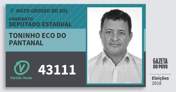 Santinho Toninho Eco do Pantanal 43111 (PV) Deputado Estadual | Mato Grosso do Sul | Eleições 2018