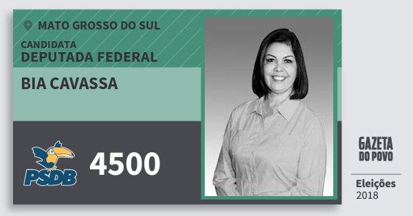 Santinho Bia Cavassa 4500 (PSDB) Deputada Federal | Mato Grosso do Sul | Eleições 2018