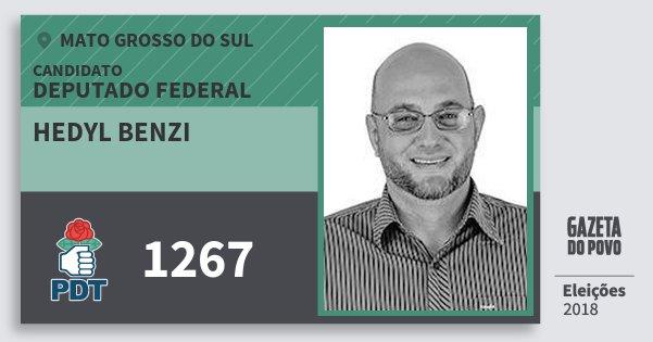 Santinho Hedyl Benzi 1267 (PDT) Deputado Federal | Mato Grosso do Sul | Eleições 2018