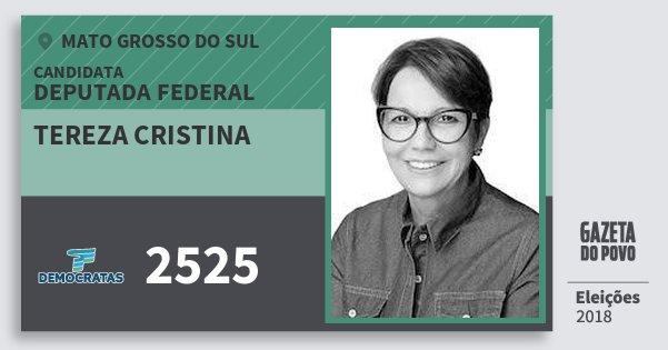 Santinho Tereza Cristina 2525 (DEM) Deputada Federal | Mato Grosso do Sul | Eleições 2018