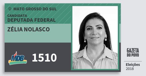 Santinho Zélia Nolasco 1510 (MDB) Deputada Federal | Mato Grosso do Sul | Eleições 2018