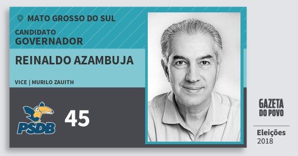 Santinho Reinaldo Azambuja 45 (PSDB) Governador | Mato Grosso do Sul | Eleições 2018