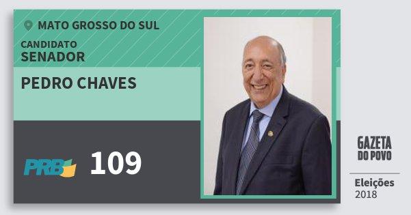 Santinho Pedro Chaves 109 (PRB) Senador | Mato Grosso do Sul | Eleições 2018