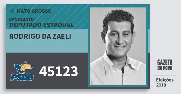 Santinho Rodrigo da Zaeli 45123 (PSDB) Deputado Estadual | Mato Grosso | Eleições 2018