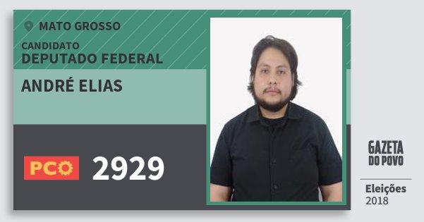 Santinho André Elias 2929 (PCO) Deputado Federal | Mato Grosso | Eleições 2018