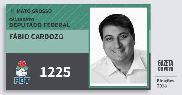 Santinho Fábio Cardozo 1225 (PDT) Deputado Federal | Mato Grosso | Eleições 2018