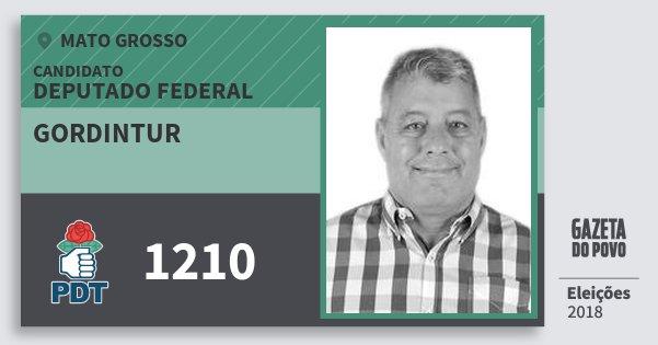 Santinho Gordintur 1210 (PDT) Deputado Federal | Mato Grosso | Eleições 2018