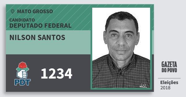Santinho Nilson Santos 1234 (PDT) Deputado Federal   Mato Grosso   Eleições 2018