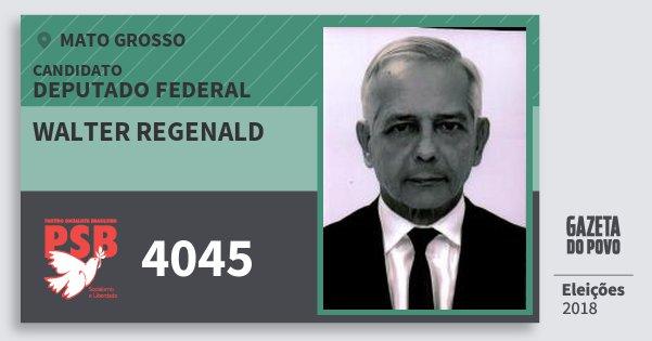 Santinho Walter Regenald 4045 (PSB) Deputado Federal | Mato Grosso | Eleições 2018