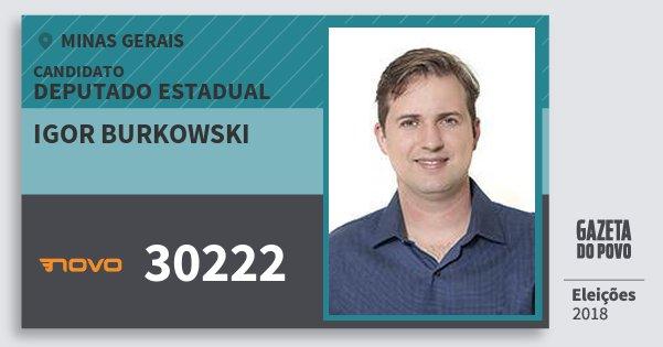 Santinho Igor Burkowski 30222 (NOVO) Deputado Estadual | Minas Gerais | Eleições 2018