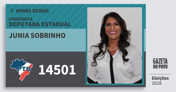 Santinho Junia Sobrinho 14501 (PTB) Deputada Estadual | Minas Gerais | Eleições 2018
