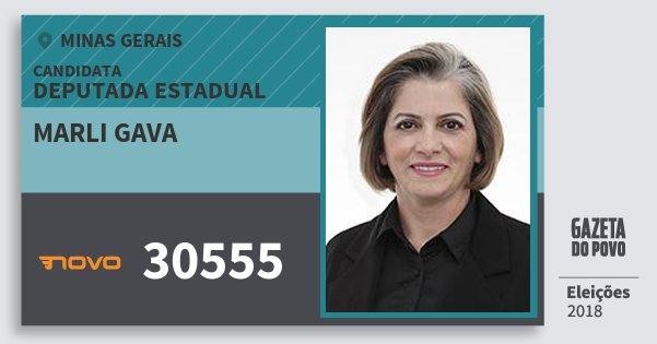 Santinho Marli Gava 30555 (NOVO) Deputada Estadual | Minas Gerais | Eleições 2018