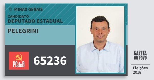Santinho Pelegrini 65236 (PC do B) Deputado Estadual | Minas Gerais | Eleições 2018