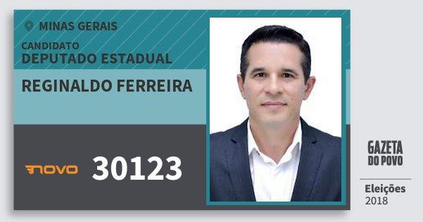 Santinho Reginaldo Ferreira 30123 (NOVO) Deputado Estadual | Minas Gerais | Eleições 2018