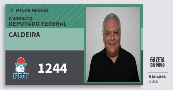 Santinho Caldeira 1244 (PDT) Deputado Federal | Minas Gerais | Eleições 2018