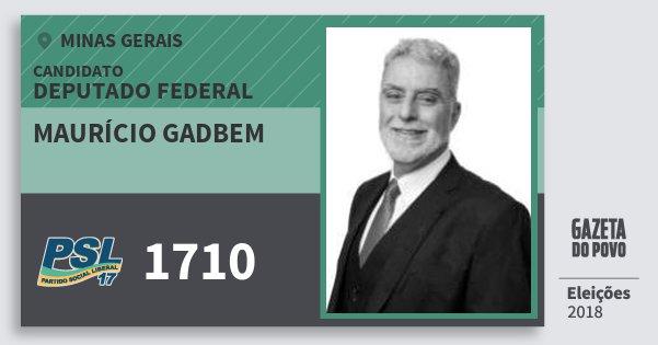 Santinho Maurício Gadbem 1710 (PSL) Deputado Federal | Minas Gerais | Eleições 2018