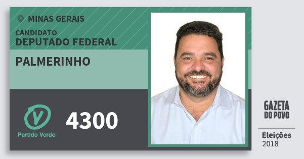 Santinho Palmerinho 4300 (PV) Deputado Federal | Minas Gerais | Eleições 2018