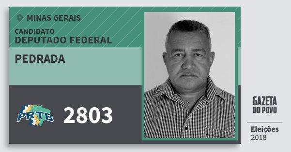 Santinho Pedrada 2803 (PRTB) Deputado Federal | Minas Gerais | Eleições 2018